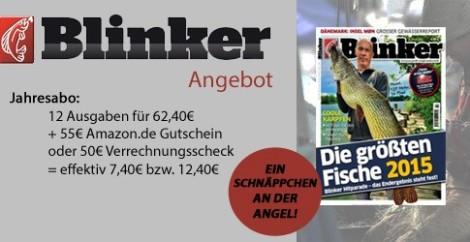 Blinker2101